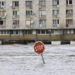 poplavee
