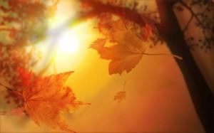 suncano-jesen-575x359